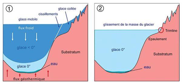 (1): glacier polythermique: en altitude la glace est collée au substratum (T° < 0°C), pas d'érosion des trimlines, Des cisaillements se mettent en place entre la glace mobile du glacier principal (Bennett, 2003) et la glace collée au substrat. Le flux de froid qui refroidit la masse du glacier (flèches blanches) dépend de la température de l'air et surtout de l'accumulation de la neige en surface. Le flux géothermique s'y oppose (flèches rouges); la glace devient tempérée à la base et la fusion apparaît. (2): évolution en glacier tempéré en fin de période froide avec contact érosif glace/roche, genèse et/ou reprise des trimlines héritées du précédent épisode glaciaire.
