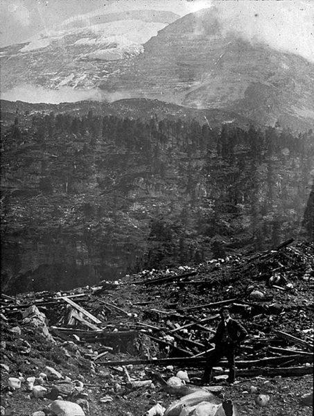 La forêt dévastée de Spittelmatte après l'avalanche
