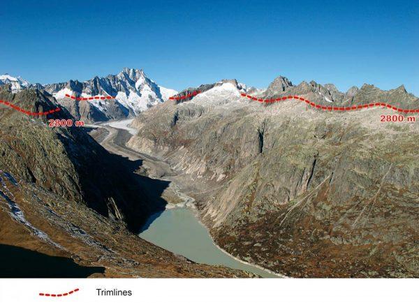 La trimline de l'aiguiller de Loria témoigne d'une surface du glacier atteignant 2450/2500 m sur Vallorcine