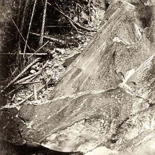Dollfus-Ausset, 6 septembre 1850 le glacier d'Aletsch en crue s'avance dans la forêt, © JHV